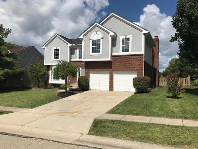 Hamilton County Single Family Home For Sale: 9936 Voyager Lane