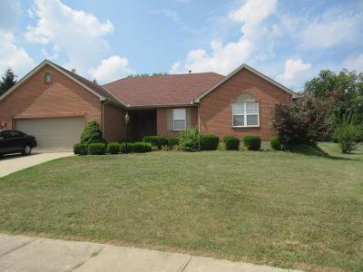 Hamilton County Single Family Home For Sale: 11917 Winston Circle