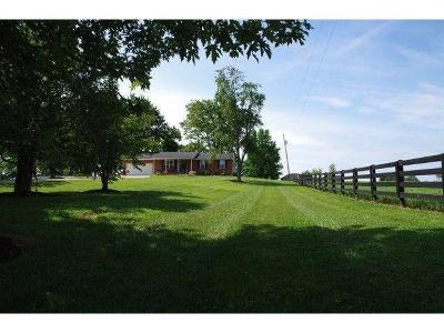 Single Family Home For Sale: 9924 Tri County Road