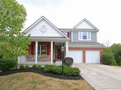 Hamilton County Single Family Home For Sale: 12105 Brookway Drive