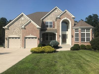 Single Family Home For Sale: 410 Bridle Pass Way