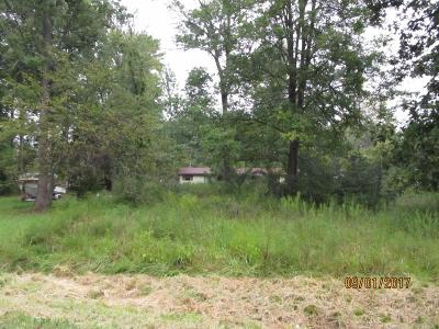 Adams County, Brown County, Clinton County, Highland County Residential Lots & Land For Sale: 11999 Outerview Trail