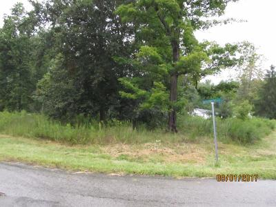 Adams County, Brown County, Clinton County, Highland County Residential Lots & Land For Sale: 12007 Outerview Trail