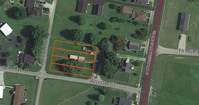 Adams County, Brown County, Clinton County, Highland County Single Family Home For Sale: 21 Willow Street