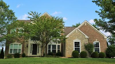 Single Family Home For Sale: 372 Old Willow Court