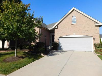 Single Family Home For Sale: 3791 Heritage Pointe Boulevard