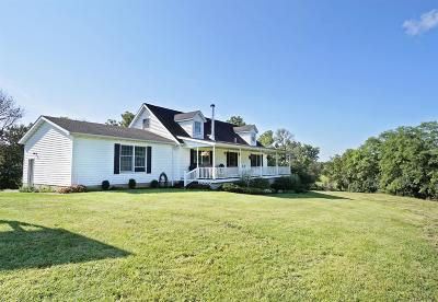 Adams County, Brown County, Clinton County, Highland County Single Family Home For Sale: 1317 Ireland Road