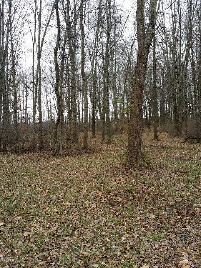 Adams County, Brown County, Clinton County, Highland County Residential Lots & Land For Sale: Us Rt 68 & Park Rd