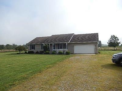Adams County, Brown County, Clinton County, Highland County Single Family Home For Sale: 314 Pansy Road