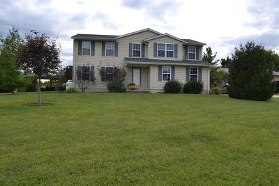 Adams County, Brown County, Clinton County, Highland County Single Family Home For Sale: 8148 St Rt 125