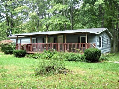 Adams County, Brown County, Clinton County, Highland County Single Family Home For Sale: 390 Nauvoo Road