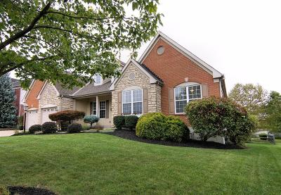 Single Family Home For Sale: 3867 Lost Willow Drive