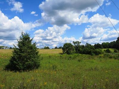 Adams County, Brown County, Clinton County, Highland County Residential Lots & Land For Sale: Lyon Road