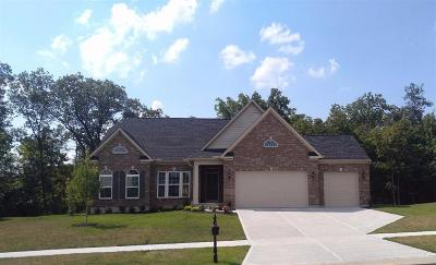 Butler County Single Family Home For Sale: 5856 Ferdinand Drive
