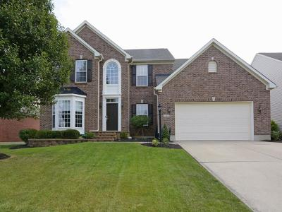 Single Family Home For Sale: 217 Leather Leaf Lane