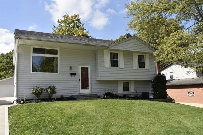 Single Family Home For Sale: 17 Yellowdale Drive