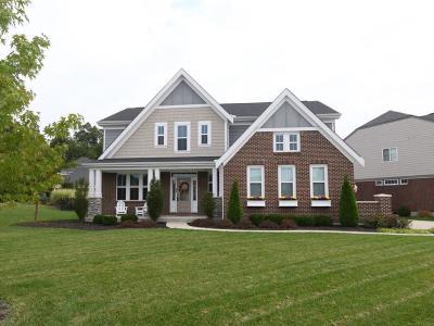 Single Family Home For Sale: 10208 Elmfield Drive