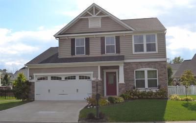 Single Family Home For Sale: 252 Stone Ridge Boulevard