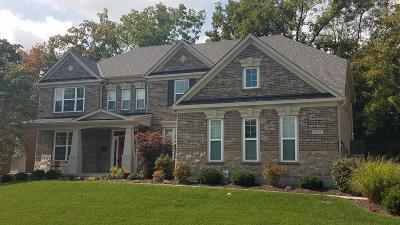 Single Family Home For Sale: 167 Ramsey Court