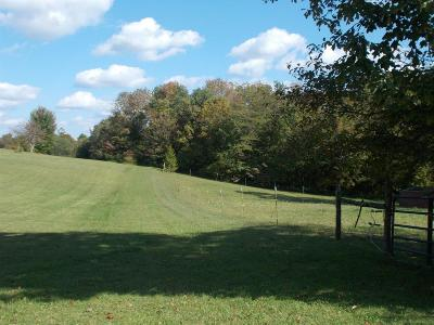 Adams County, Brown County, Clinton County, Highland County Residential Lots & Land For Sale: Pigeon Roost Road