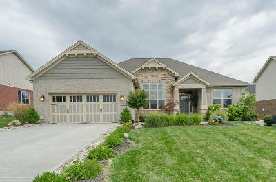 Single Family Home For Sale: 735 Griffin Lane