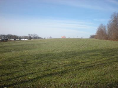 West Harrison Residential Lots & Land For Sale: Andres Road