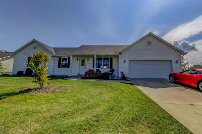 Adams County, Brown County, Clinton County, Highland County Single Family Home For Sale: 206 Parker Place