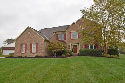 Single Family Home For Sale: 4164 Melampy Creek Lane