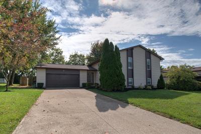 Single Family Home For Sale: 135 Stillpass Way