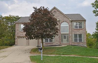 Single Family Home For Sale: 6379 Hedgerow Drive