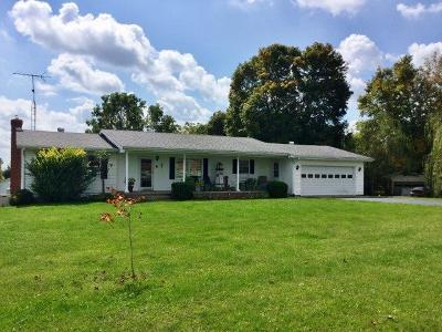 Adams County, Brown County, Clinton County, Highland County Single Family Home For Sale: 9880 Us Rt 50