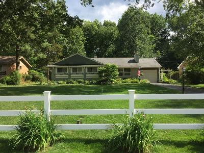 Single Family Home For Sale: 6853 High Meadows Drive