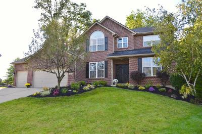 Single Family Home For Sale: 3459 Strata Court