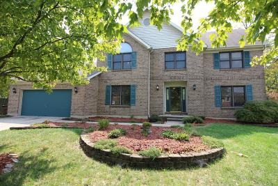 Single Family Home For Sale: 7343 Brushwood Drive