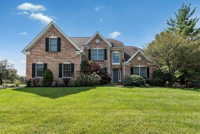 Single Family Home For Sale: 3979 St Andrews Court