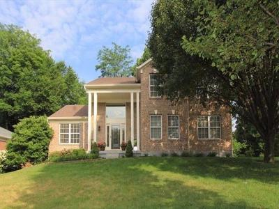 Single Family Home For Sale: 209 West Stoneridge Drive