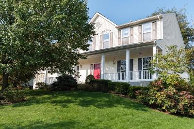 Single Family Home For Sale: 517 Cherry Hill Lane