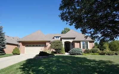 Single Family Home For Sale: 8094 Trotters Chase