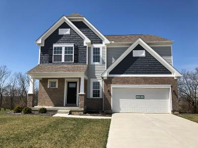 Single Family Home For Sale: 864 Hocking Meadow Circle