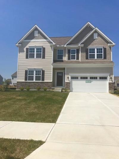 Single Family Home For Sale: 842 Hocking Meadow Circle
