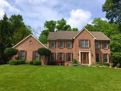 Clermont County Single Family Home For Sale: 6628 Ridgeview Court