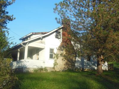 Huntington Twp OH Single Family Home For Sale: $29,900