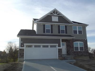 Single Family Home For Sale: 3273 Blue Springs Drive