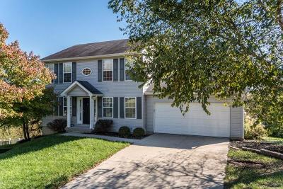 Hamilton County Single Family Home For Sale: 67 Miamiview Drive