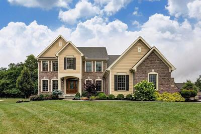 Clermont County Single Family Home For Sale: 555 Silverleaf Lane