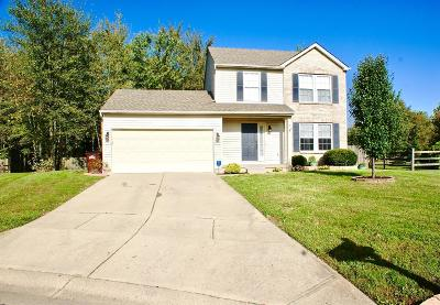 Clermont County Single Family Home For Sale: 17 Flamingo Court