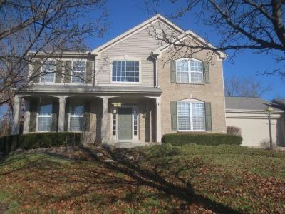 Warren County Single Family Home For Sale: 113 Highcliff Court