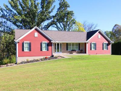 Adams County, Brown County, Clinton County, Highland County Single Family Home For Sale: 8170 St Rt 380