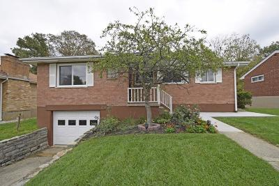Single Family Home For Sale: 3769 Creekview Drive