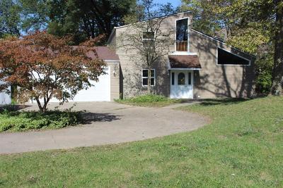 Single Family Home For Sale: 4 Annadale Lane